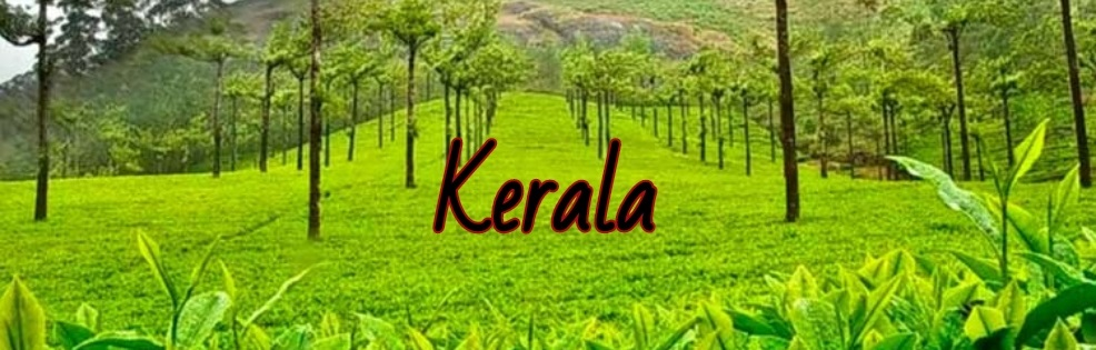 kerela cover picture