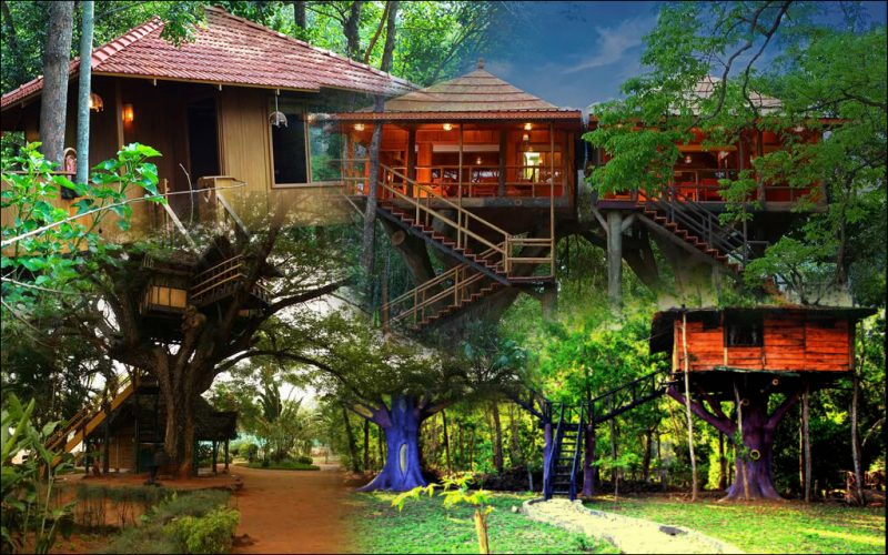 7 Best Tree Houses in India to Relive Childhood Days: Gateway for a perfect Staycation
