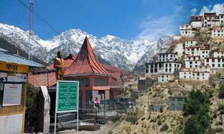 8 Must-Visited Places in India for a Perfect Family Holiday