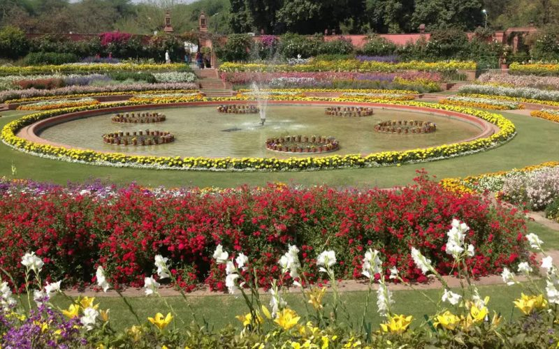 The Bouquet Of Colorful Flowers At Mughal Garden Awaits Your Presence! Visit before 8th March