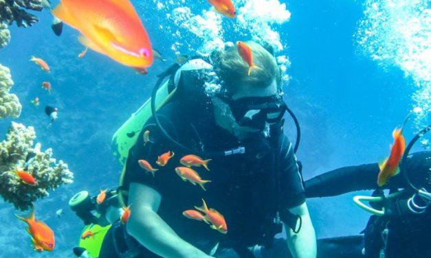 Scuba Diving Adventures In India