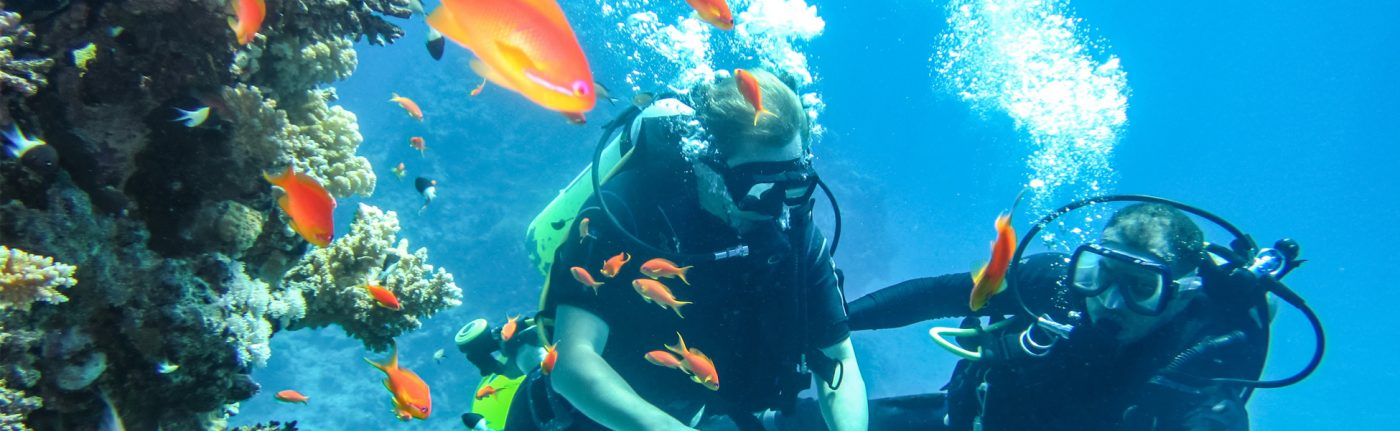 Scuba Diving Adventures In India