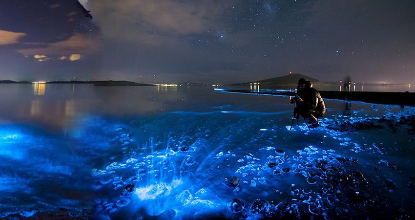 7 Natural Phenomena in Australia that will amaze you!!